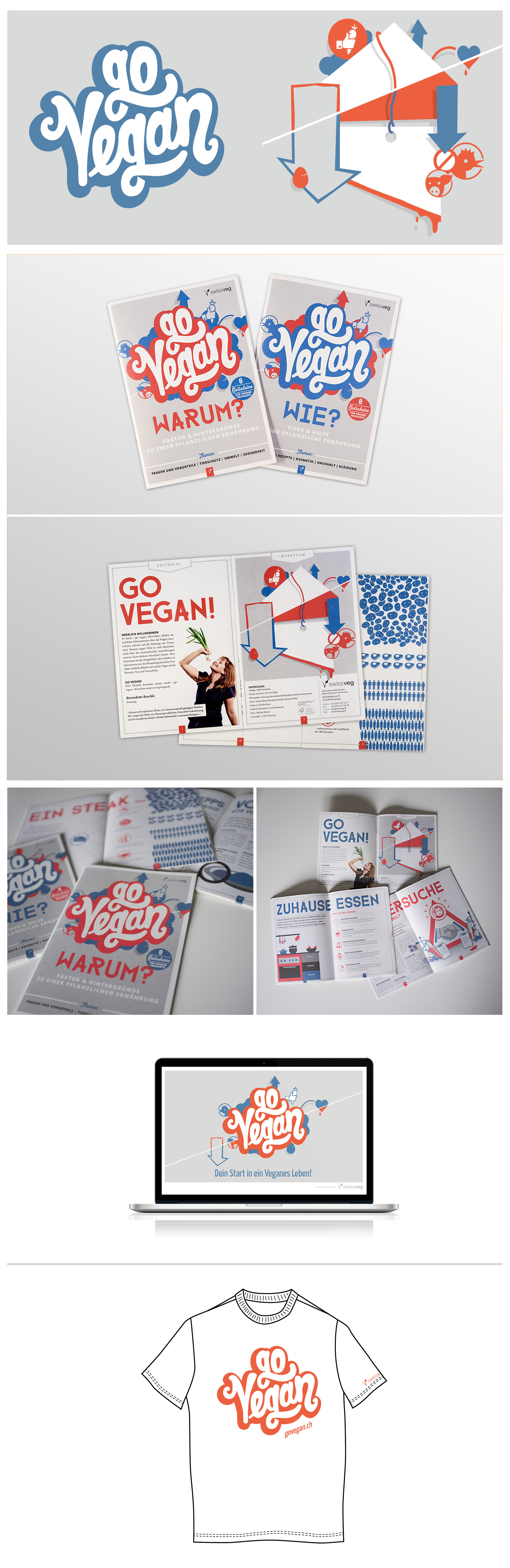 layout and illustrations for brochures